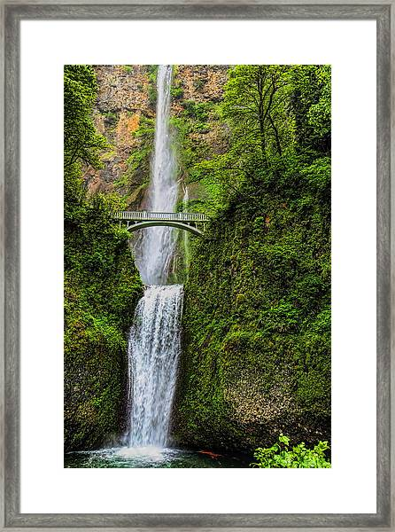 Spring At Multnomah Falls Framed Print