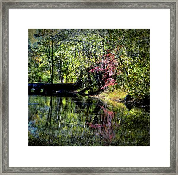 Framed Print featuring the photograph Spring Colors by Samuel M Purvis III