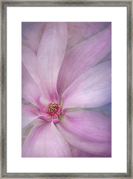 Spring Comes Softly Framed Print