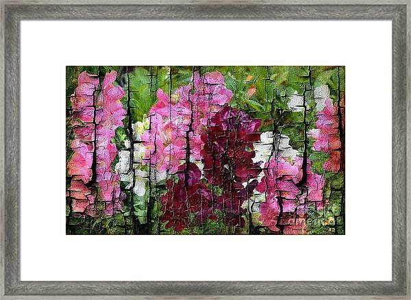 Spring Garden H131716 Framed Print