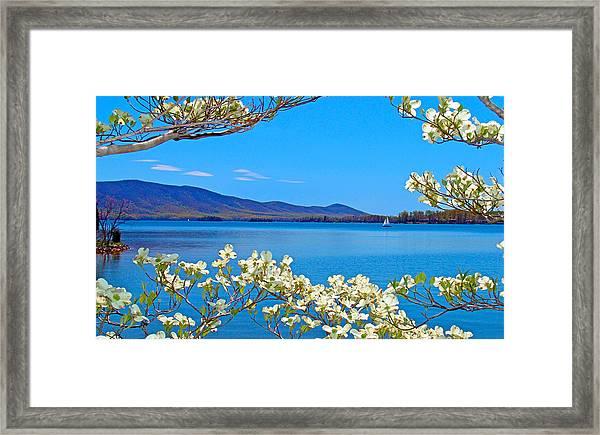 Spring Has Sprung 2 Smith Mountain Lake Framed Print