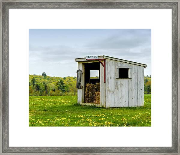 Spring Hay Framed Print