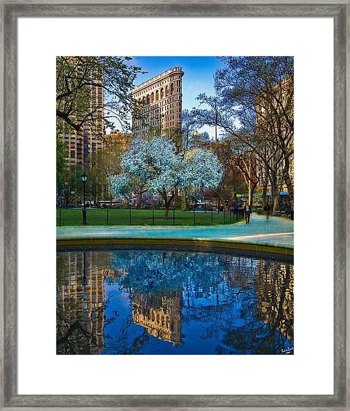 Spring In Madison Square Park Framed Print