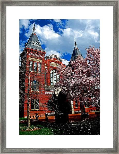Spring In Washington Dc Framed Print