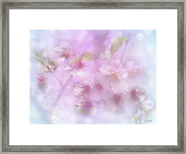Spring Is Here Framed Print