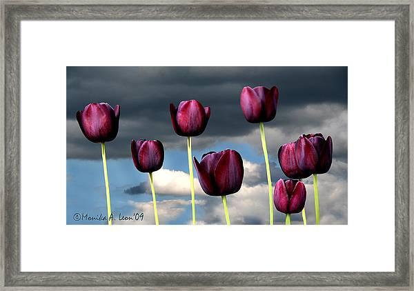 Spring On Ashmoore Framed Print
