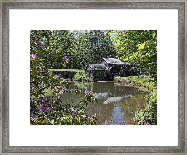 Spring Reflections Of An Ancient Mill Framed Print