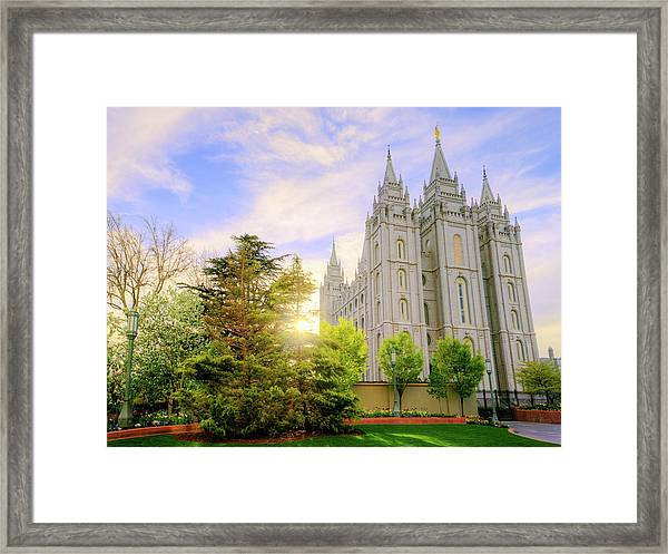 Spring Rest Framed Print