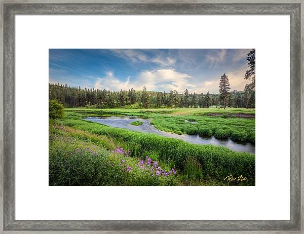 Spring River Valley Framed Print