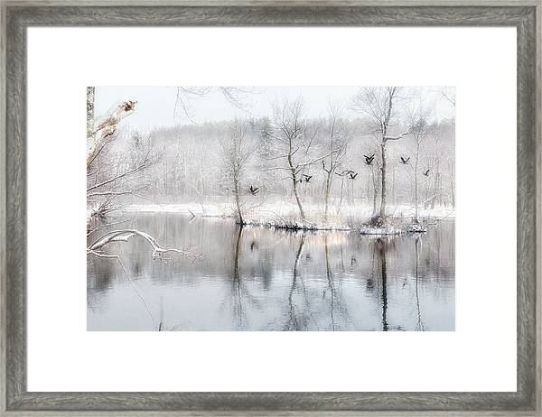 Spring Snow Framed Print