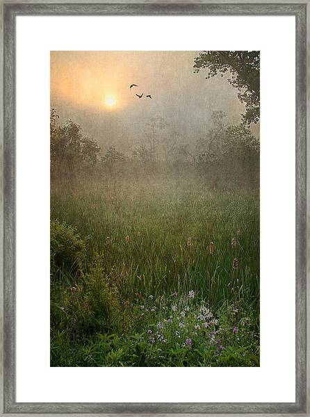 Spring Sunrise In The Valley Framed Print