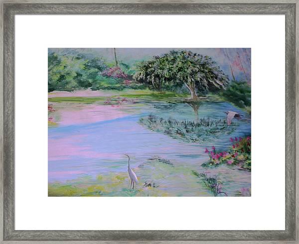 Spring Time Colors Framed Print