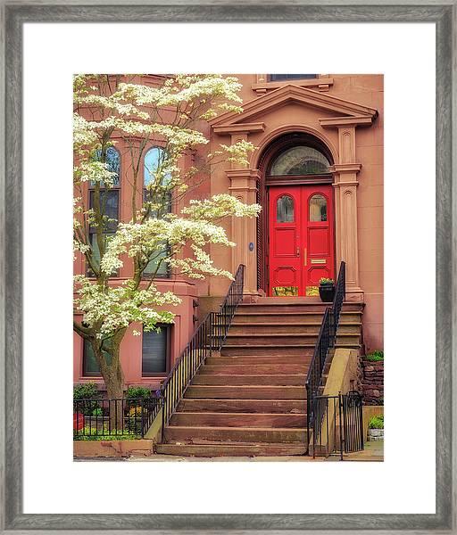 Bushnell Park Brownstone Framed Print