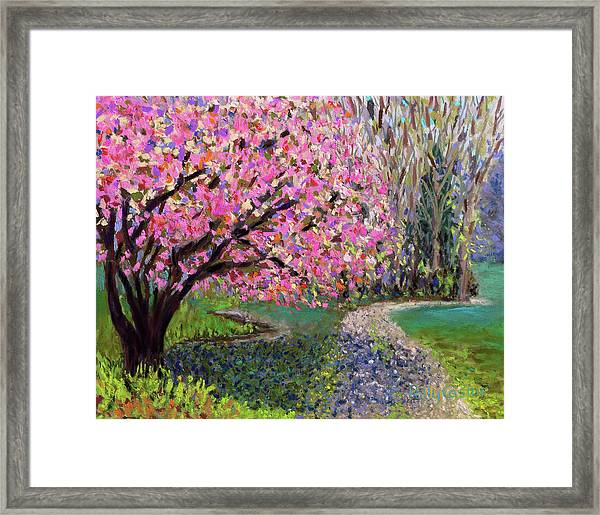 Spring Tree At New Pond Farm Framed Print