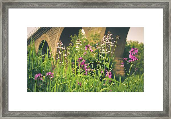 Spring Under The Arches Framed Print