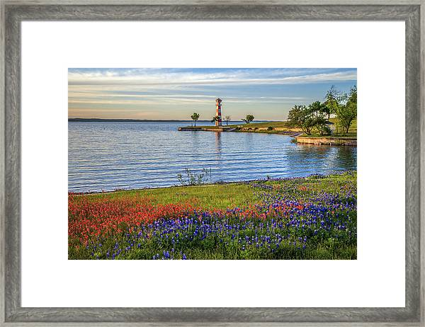 Spring Wildflowers Of Lake Buchanan Framed Print