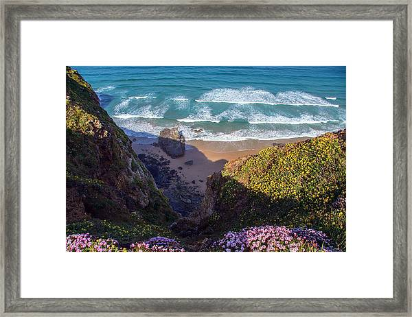 Springtime In Cornwall Framed Print