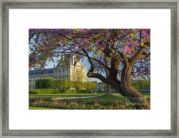Framed Print featuring the photograph Springtime In Paris by Brian Jannsen