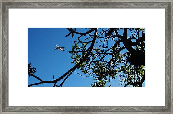 Springtime In The City Framed Print