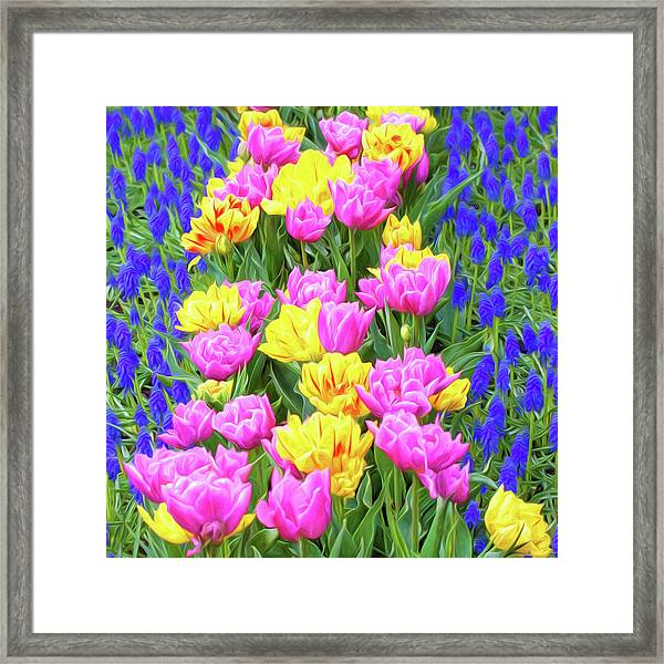 Springtime Tulips 01 Painterly Effecy Framed Print