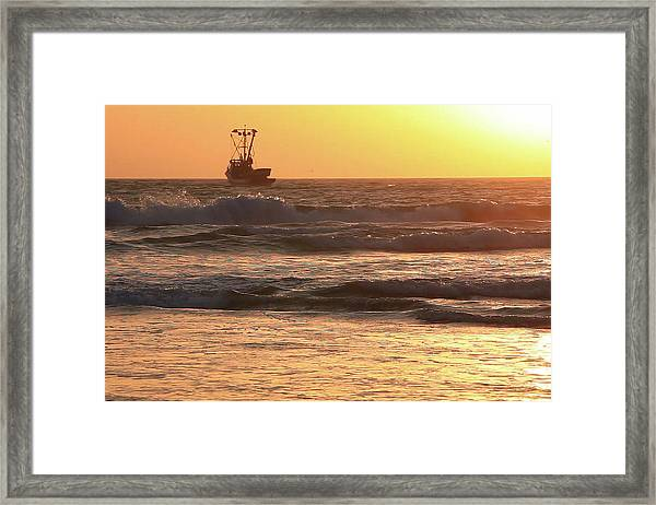 Squid Boat Golden Sunset Framed Print