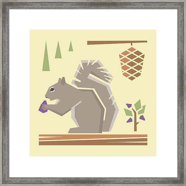 Squirrel1 Framed Print