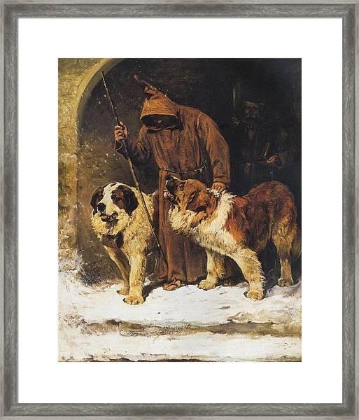 St. Bernards To The Rescue Framed Print