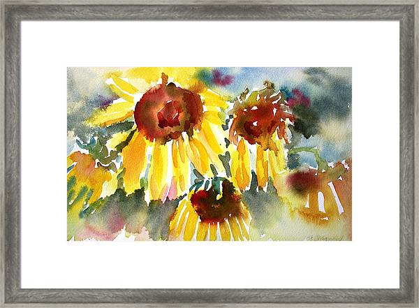 St. Charmand Sunflowers Framed Print