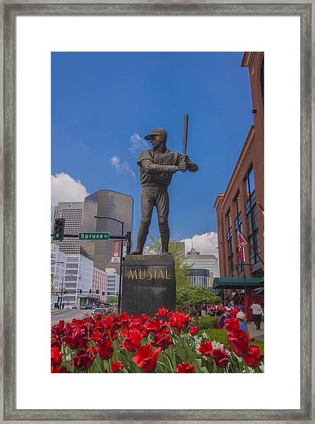 St. Louis Cardinals Busch Stadium Stan Musial Roses Framed Print