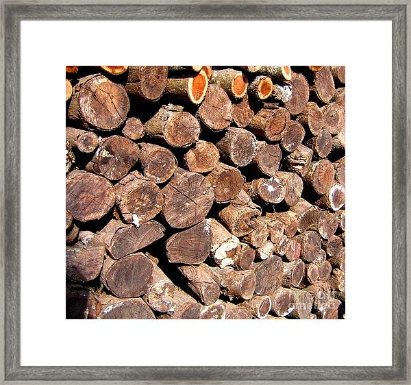 Stacked Tree Logs Framed Print