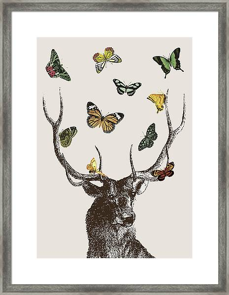 Stag And Butterflies Framed Print