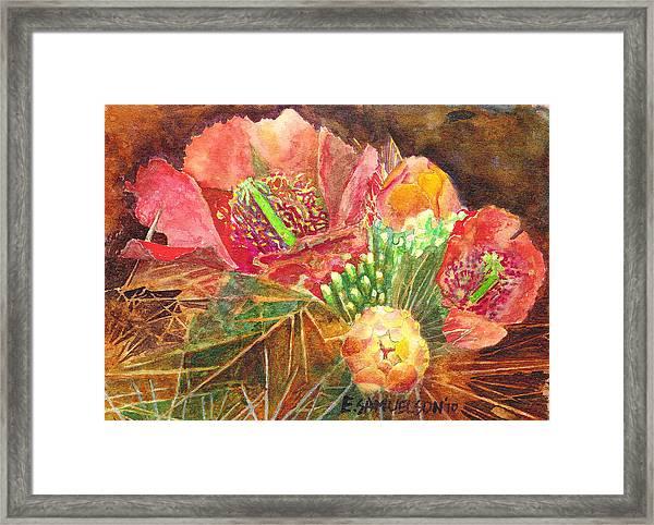 Staghorn In Bloom Framed Print