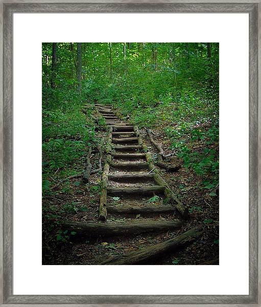 Stairway At Unicoi Gap On The At Framed Print