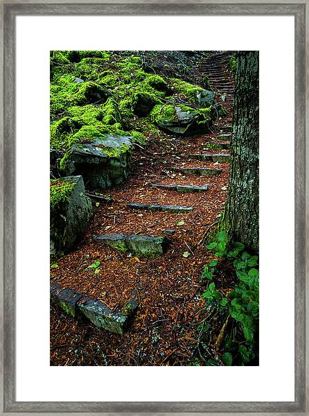 Stairway To..... Framed Print