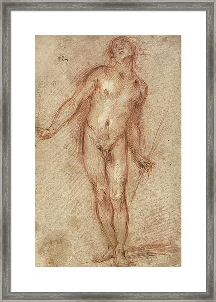 Standing Male Nude Framed Print