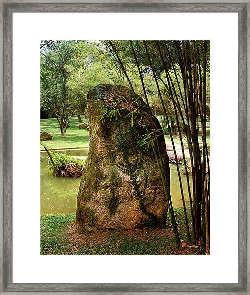 Standing Stone With Fern And Bamboo 19a Framed Print