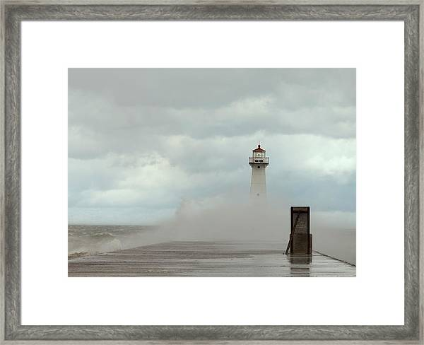 Standing Tall Against The Storm Framed Print