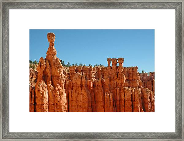 Standing Tall In Bryce Canyon Framed Print