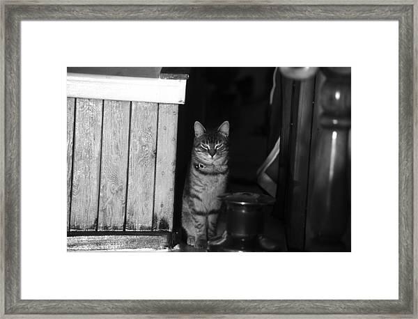 Standing Watch Framed Print