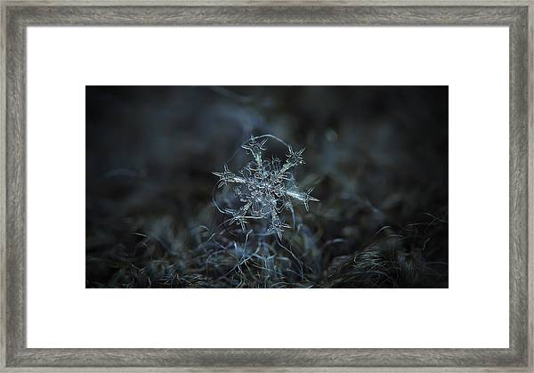 Starlight, Panoramic Version Framed Print