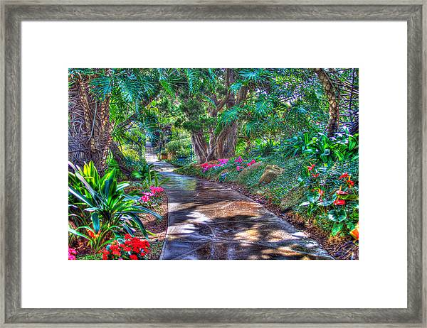 Stay On Your Path Framed Print