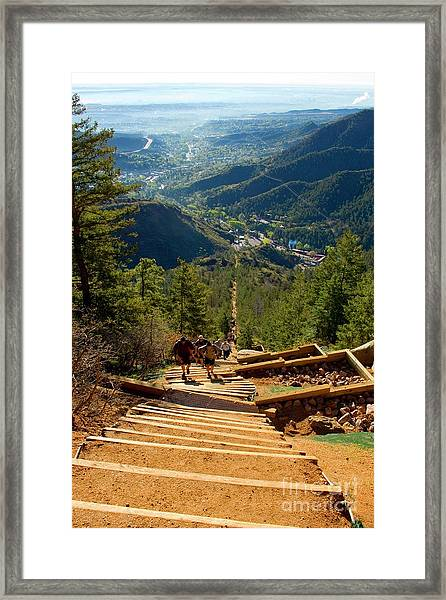 Steep Manitou Incline And Barr Trail Framed Print
