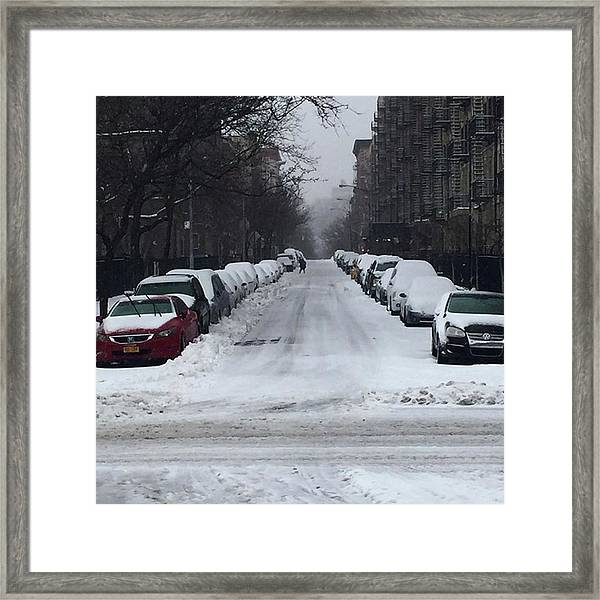 #stella! Happy ❄️ Day, #nyc Framed Print by Gina Callaghan