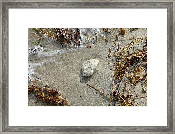 Stone At The Shore - South Beach Framed Print