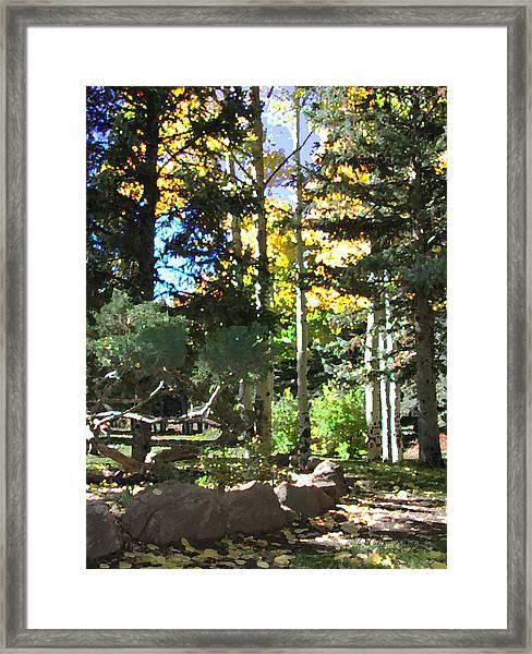 Stone Park Trails Framed Print