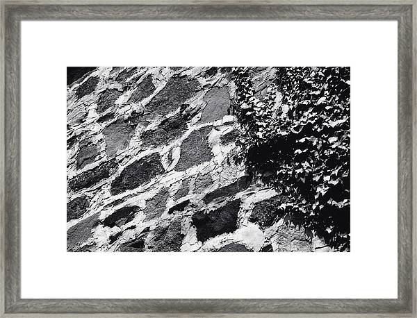 Stone Wall With Ivy Framed Print