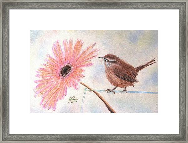 Stopping By To Say Hello Framed Print
