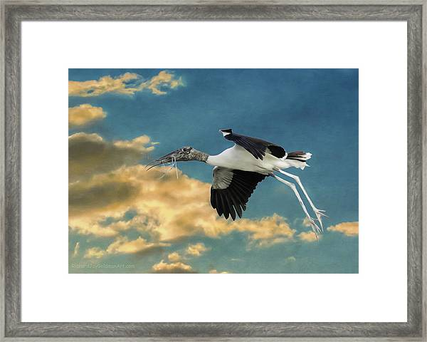 Stork Bringing Nesting Material Framed Print