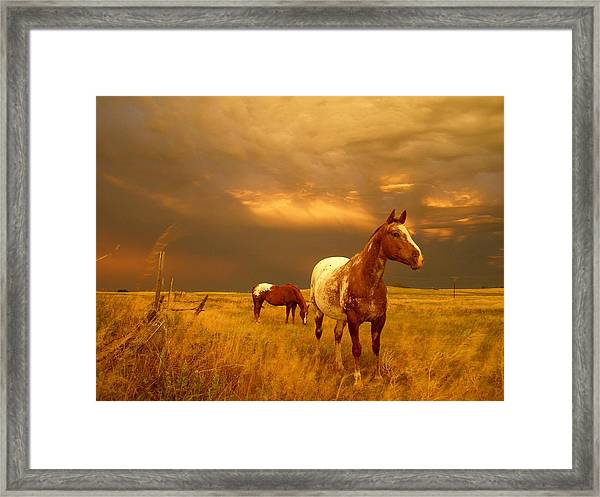 Framed Print featuring the photograph Storm Watcher by Bryan Smith