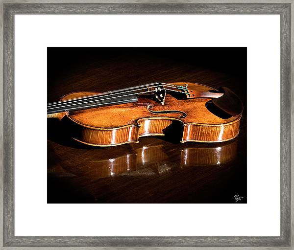 Stradivarius In Sunlight Framed Print